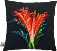 Decolenti   Sierkussenhoes   Neon Flower Kussen   Zwart   Groen   Oranje   Rood   Blauw   Wasbaar   Decoratie   45cm x 45cm
