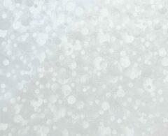 Gekkofix Plakfolie - Kleeffolie - Kleefplastiek - Plakplastiek - 67,5 cm x 15 meter - Grote rol - Stippen - Transparant