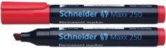 Marker Schneider Maxx 250 permanent beitelpunt rood