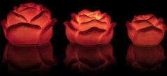 """Rosa Flambiance LED-Kerzen """"Rosenblüten"""", 3tlg"""