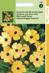 Oranje Buzzy Seeds Hortitops Zaden - Suzanne-Met-De-Mooie-Ogen (Thunbergia Alata)