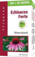 Fytostar Echinacea forte 1215 maxi 120 Capsules