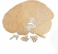 Kaboomlaser Hersenkraker | Houten Puzzel | Entropy serie | 73 stukjes