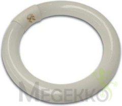 Witte Velleman Reservelamp 22W Voor De Vtlamp2