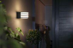 Antraciet-grijze Philips Hue Lucca Wandlamp - White - 1 Lichtpunt - antraciet - Buiten