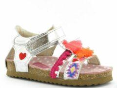Zilveren Shoesme BI8S092