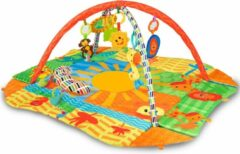 Kidwell Babygym met 8 speeltjes - 114 x 98 x 50 cm