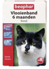 Beaphar Vlooienband 6 Maanden Kat 35 cm - Anti vlooienmiddel - Rood