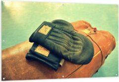 Bruine KuijsFotoprint Tuinposter – Ouderwetse Handschoenen met Boksbal - 150x100cm Foto op Tuinposter (wanddecoratie voor buiten en binnen)