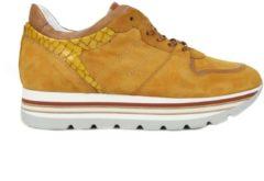 Gele Piedi Nudi Piede nudi Sneaker M40101 Oker
