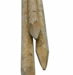 Westwood Perkoenpaal | Onbehandeld | D12 | 160 cm