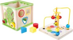 Small Foot Company Small Foot Training Kubus Met Loop Insecten Hout