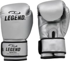 Legend Sports Bokshandschoenen Powerfit & Protect Zilver Mt 14oz