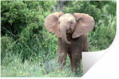StickerSnake Muursticker Baby olifant (2) - Baby olifant in het gras met gele bloemen - 90x60 cm - zelfklevend plakfolie - herpositioneerbare muur sticker