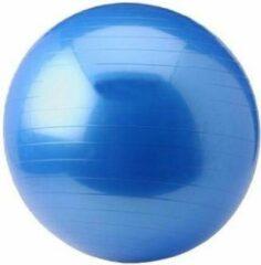 Blauwe Gym Ball - Focus Fitness - 65CM