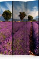 Paarse Kamerscherm - Scheidingswand - Vouwscherm - Lavender field in Provence, France [Room Dividers] 135x172 - Artgeist Vouwscherm