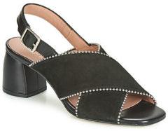 Zwarte Sandalen Fericelli JARIANI