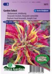 Sluis Garden Bladamarant driekleurig bloemzaden - Garden Select