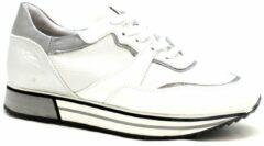 Witte Piedi Nudi 889113