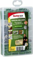 Groene Fischer fietsen Fischer SX met A2-schroef, MEISTER-BOX greenline