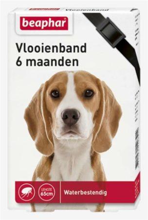 Afbeelding van Beaphar Vlooienband 6 Mnd Hond 65 cm - Anti vlooienmiddel - Zwart