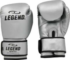 Legend Sports bokshandschoenen Powerfit & Protect zilver mt 08oz