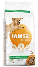 IAMS Dog Adult Large Breed - Lamb - 12 kg