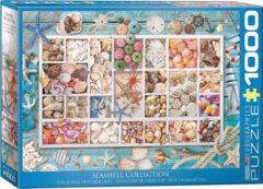 Eurographics puzzel Seashell Collection - 1000 stukjes