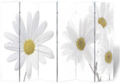 Witte VidaXL Kamerverdeler inklapbaar bloem 240x170 cm