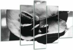 GroepArt Glas schilderij Koffiebonen, Keuken | Zwart, Wit, Grijs | 170x100cm 5Luik | Foto print op Glas | F006674