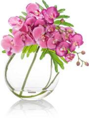 Brian by Brian Rennie Blumenarrangement Orchidee