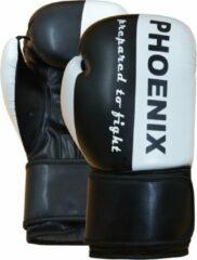 Phoenix bokshandschoenen zwart/wit 10oz
