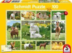Schmidt Animal Babies At The Farm Puzzel - 100 Stukjes