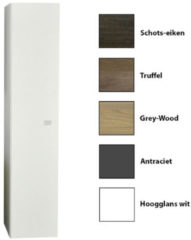 Grijze Kolomkast Sanicare Q5 1 Soft-Close Deur 160 cm Grey-Wood