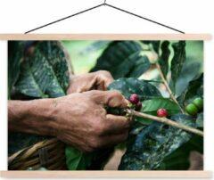 TextilePosters Een mens oogst de koffiebonen schoolplaat platte latten blank 60x40 cm - Foto print op textielposter (wanddecoratie woonkamer/slaapkamer)