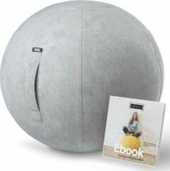 Fruscle® Ergonomische Bureaustoel Zitbal 65 cm Grijs | Suède | Bureaubal| Luxe Yogabal | Kantoor Zitbal