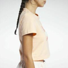Oranje Reebok Classics Graphic T-Shirt