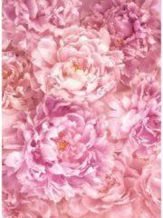 Fototapete Blüten Komar floral