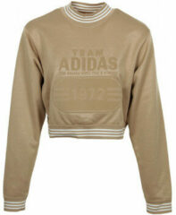 Gouden Sweater adidas Fashion League Sweat