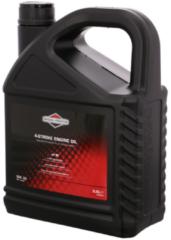 Briggs & Stratton motoröl sae 30,5.0l für Rasenmäher 100009E