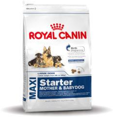 Royal Canin Shn Maxi Starter Mother & Babydog - Hondenvoer - 15 kg