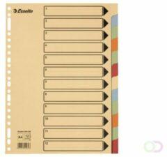 Bruna Tabbladen Esselte A4 23-gaats karton 12-delig assorti