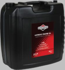 Briggs & Stratton 4-takt motoröl sae30, 25l für Rasenmäher 100046E