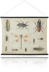 HK living HKliving Insekten Schulkarte 85 x 105 cm
