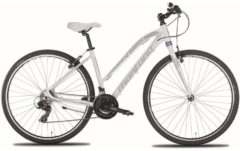 Montana Bike 28 Zoll Damen Mountainbike Montana X-Cross 21... weiß, 48cm