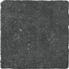 Jabo Bluestone vloertegel noir 20x20