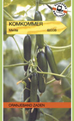Groene Oranjeband Zaden Oranjebandzaden - Komkommer Magnum F1 (vh Melita)