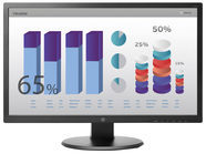 HP Inc HP v243 - LED-Monitor - 61 cm (24'') (24'' sichtbar) W3R46AA#ABB