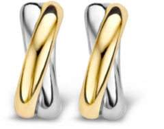 Ti Sento Milano TI SENTO - Milano 7667SY goud- en zilverkleurge oorbellen 12,5 mm