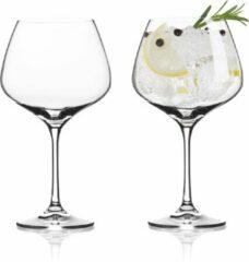Transparante VacuVin Gin Tonic Glazen - 2 stuks - Kristalglas
